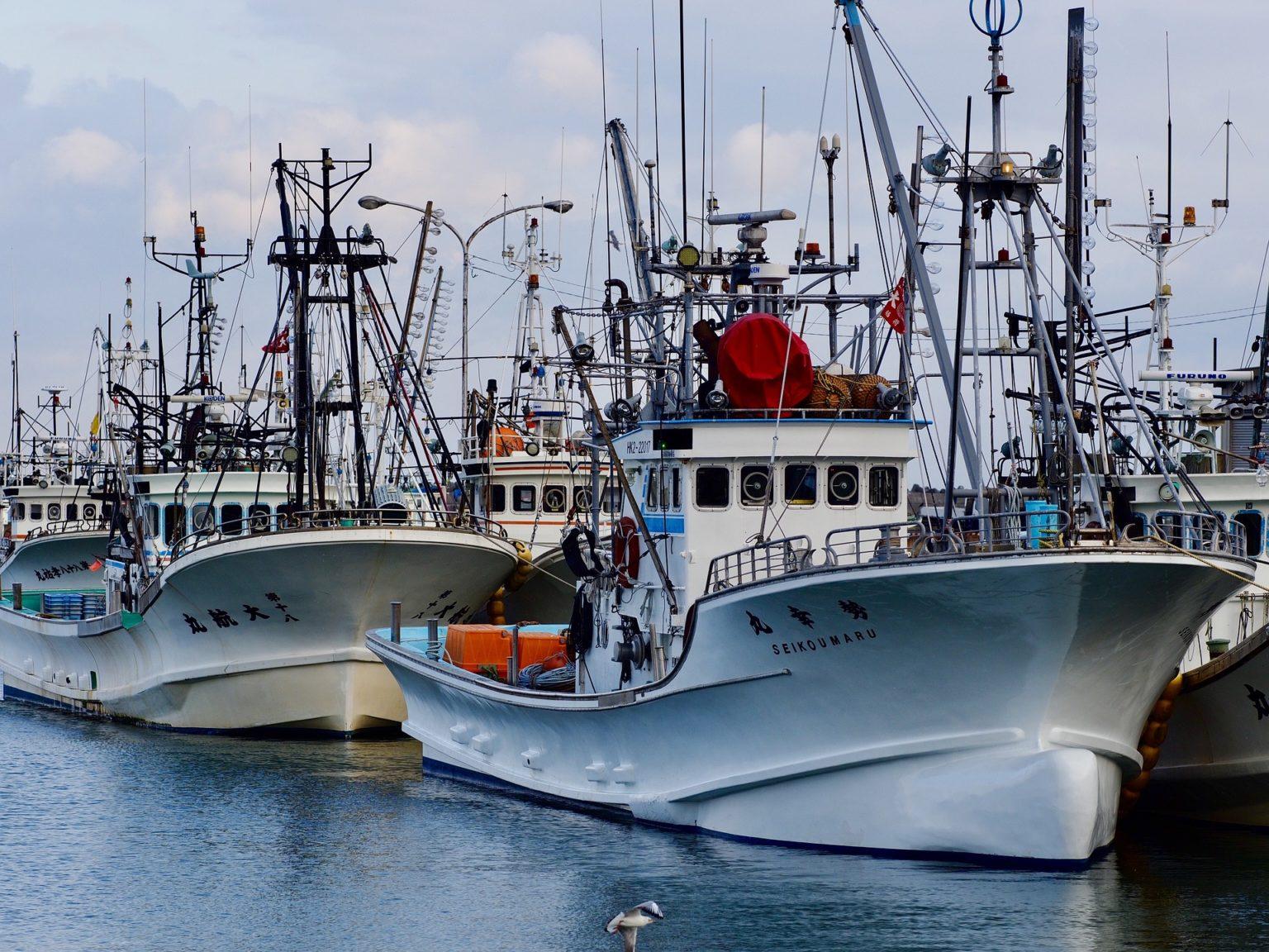 北海道の毛ガニ漁